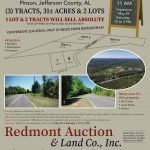 Redmont 6 5 21 Pinson 1 Page Tall A3